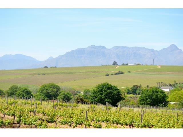Stellenbosch property for sale. Ref No: 13274103. Picture no 12