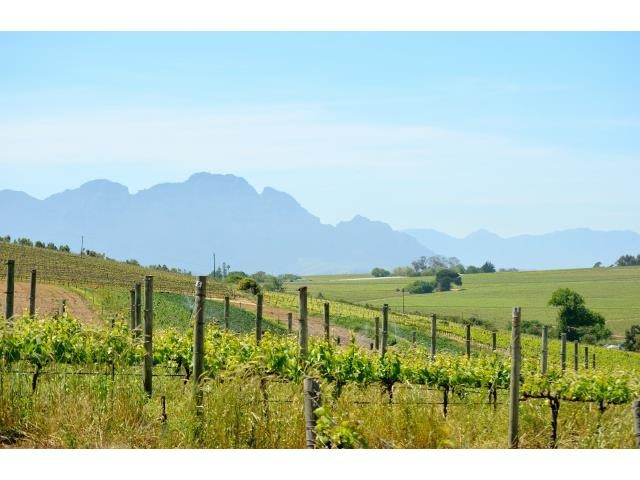 Stellenbosch property for sale. Ref No: 13274103. Picture no 18