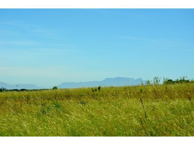 Stellenbosch property for sale. Ref No: 13274103. Picture no 5