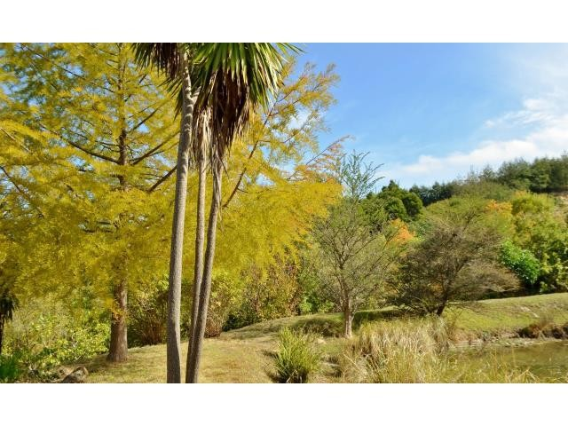 Stellenbosch property for sale. Ref No: 13269564. Picture no 4