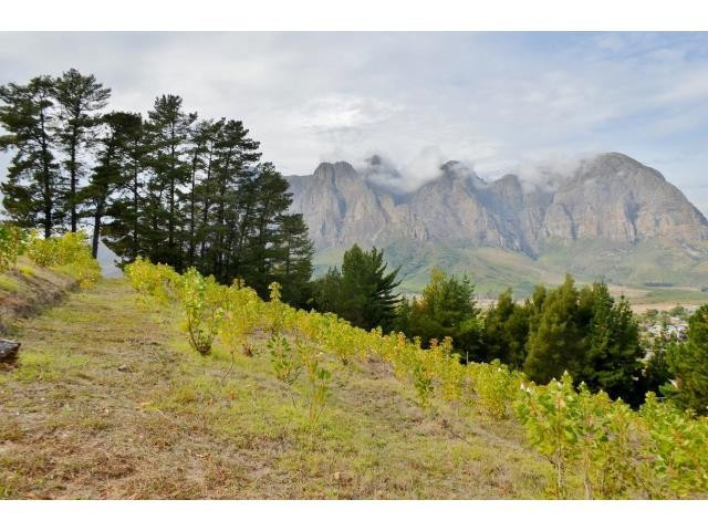 Stellenbosch property for sale. Ref No: 13269564. Picture no 5