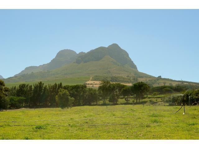 Stellenbosch property for sale. Ref No: 13291245. Picture no 22