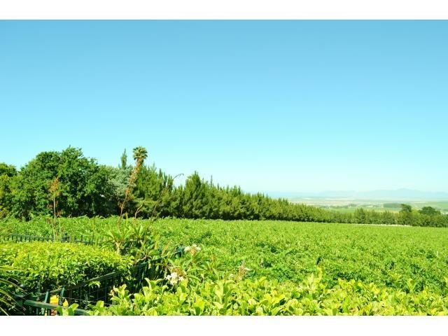 Stellenbosch property for sale. Ref No: 13291245. Picture no 21