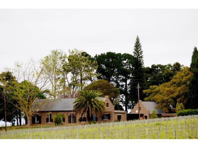 Stellenbosch property for sale. Ref No: 13269460. Picture no 3
