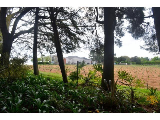 Stellenbosch property for sale. Ref No: 13269460. Picture no 18