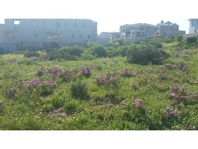 Calypso Beach property for sale. Ref No: 3244462. Picture no 4