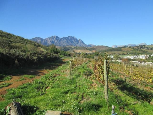 Stellenbosch property for sale. Ref No: 13374561. Picture no 15