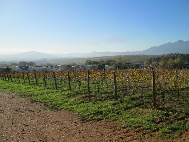 Stellenbosch property for sale. Ref No: 13374563. Picture no 16