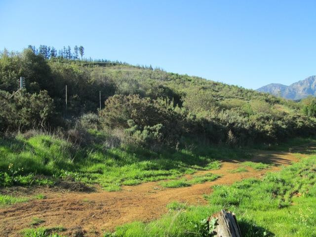 Stellenbosch property for sale. Ref No: 13374561. Picture no 16