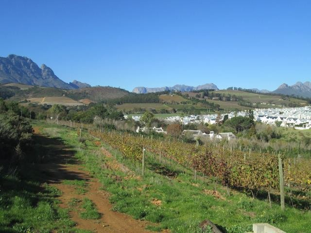 Stellenbosch property for sale. Ref No: 13374561. Picture no 7