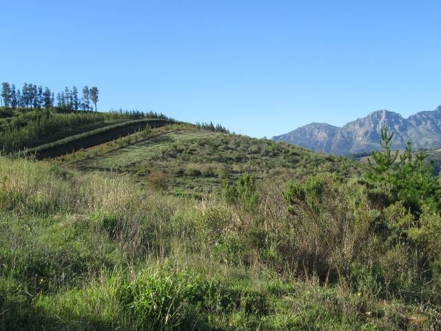Stellenbosch property for sale. Ref No: 13374561. Picture no 5