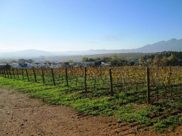 Stellenbosch property for sale. Ref No: 13374563. Picture no 14