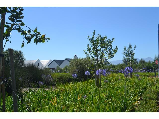 Croydon Olive Estate property for sale. Ref No: 13317067. Picture no 12