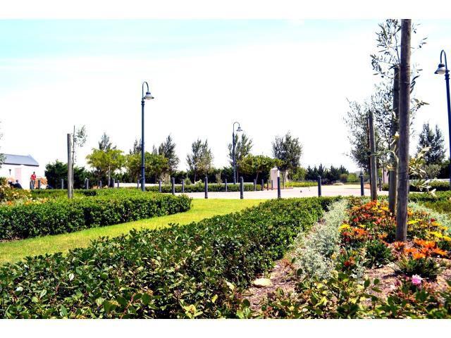 Croydon Olive Estate property for sale. Ref No: 13317067. Picture no 22