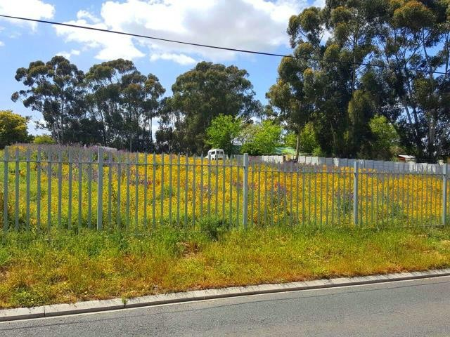 Kuils River property for sale. Ref No: 13401286. Picture no 4