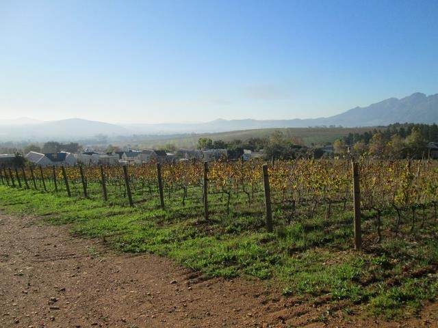 Stellenbosch property for sale. Ref No: 13374563. Picture no 17