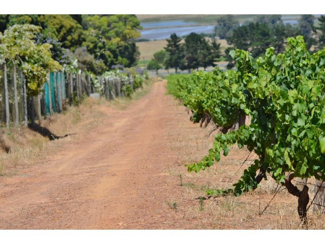 Stellenbosch for sale property. Ref No: 13280242. Picture no 4
