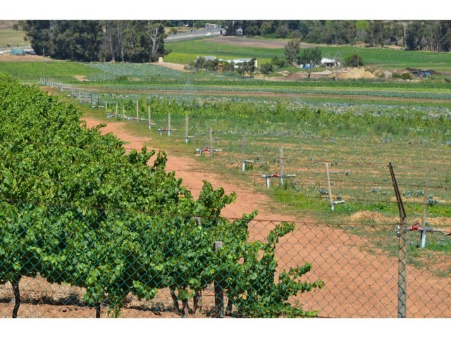 Stellenbosch for sale property. Ref No: 13280242. Picture no 8