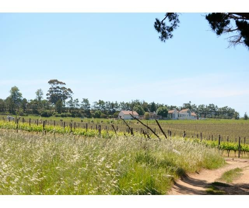 Stellenbosch property for sale. Ref No: 13274103. Picture no 14