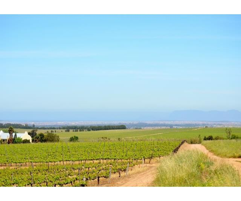 Stellenbosch property for sale. Ref No: 13274103. Picture no 4