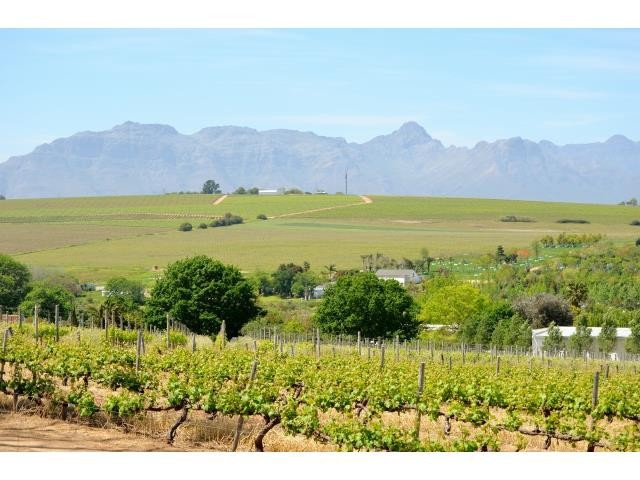 Stellenbosch property for sale. Ref No: 13274103. Picture no 9