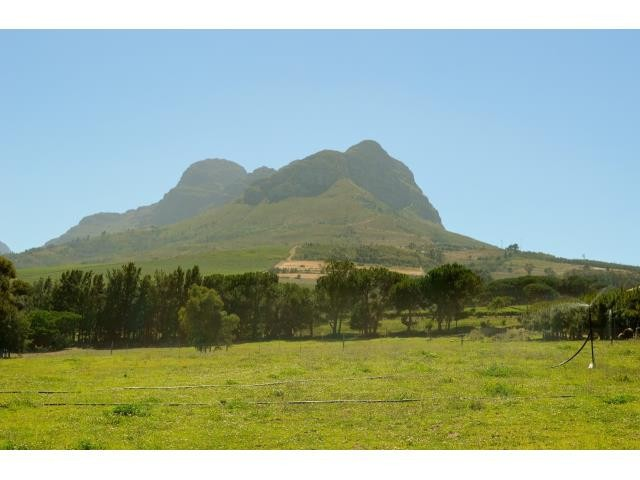 Stellenbosch property for sale. Ref No: 13291245. Picture no 22