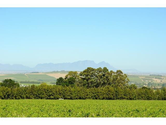 Stellenbosch property for sale. Ref No: 13291245. Picture no 19